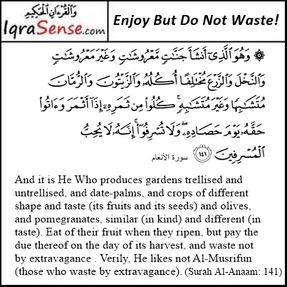 Surah Anaam - Enjoy Allah's Bounties