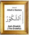 Ash-Shakur - Who is Allah