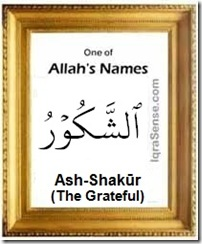 islam on As Shakur (The Grateful)   Allahs Name