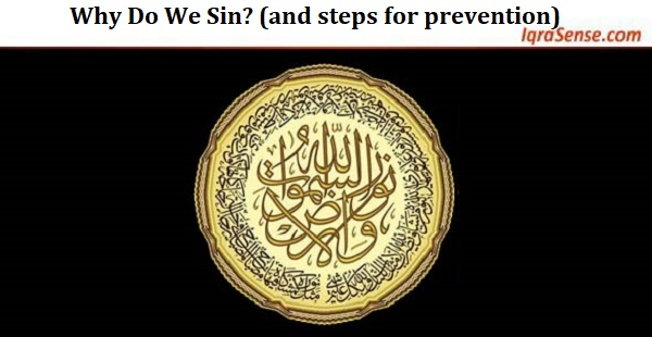 Why Do We Sin? (and steps for prevention)