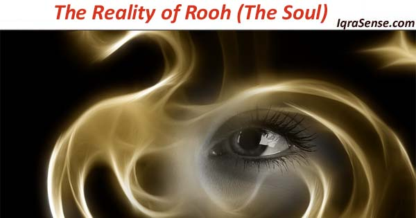 reality of rooh soul islam