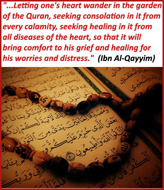 Quran recitation and reading benefits