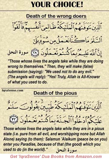 Death of the wrong Doers or Pious