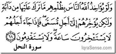 Allah punishing sins